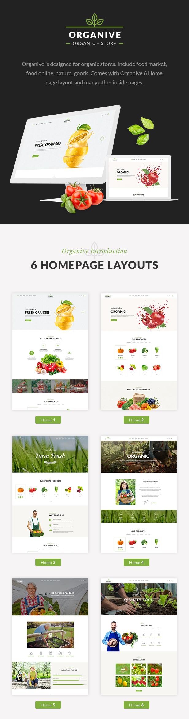 Organic Food, Organic Store,Farm Eco Food Products